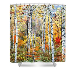 Fall Trees, Shinhodaka, Gifu, Japan Shower Curtain