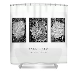 Shower Curtain featuring the photograph Fall Trio Black And White Collection by Greg Jackson
