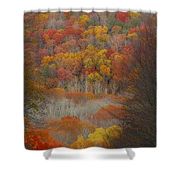 Fall Tunnel Shower Curtain by Raymond Salani III
