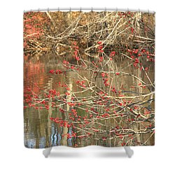 Fall Upon The Water Shower Curtain