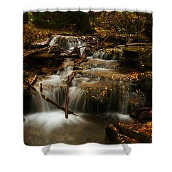 Fall With Grace Shower Curtain by Jeremy Rhoades