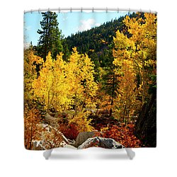 Fall2 Shower Curtain by Jeremy Rhoades