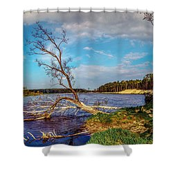 Fallen Shower Curtain