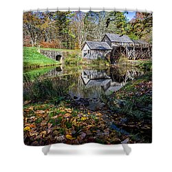 Fallen Leaves At Mabry Mill Shower Curtain