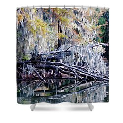 Shower Curtain featuring the photograph Fallen Reflection by Lana Trussell