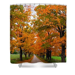 Falling For Country Farm Shower Curtain by Lingfai Leung