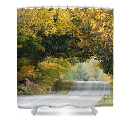 Falls Archway  Shower Curtain