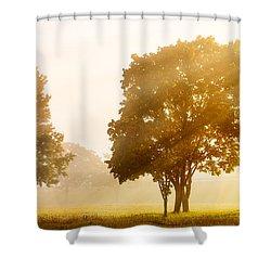 Falls Delight Shower Curtain