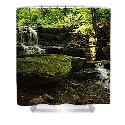 Shower Curtain featuring the photograph Fallsbrook Falls by Debra Fedchin