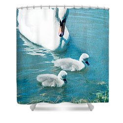 Family Of Swans At The Market Common Shower Curtain by Vizual Studio
