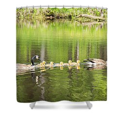 Family Outing Shower Curtain by Bill Pevlor