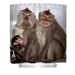 Shower Curtain featuring the photograph Family Portrait by PJ Boylan