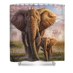 Family Stroll Shower Curtain by Phil Jaeger