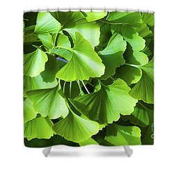 Fan Shaped Leaves Shower Curtain