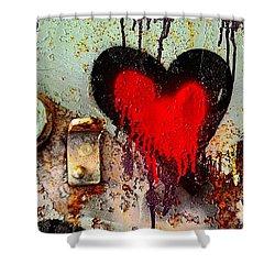 Fanatic Heart Shower Curtain by Lauren Leigh Hunter Fine Art Photography
