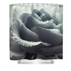 Shower Curtain featuring the photograph Fanciful by The Art Of Marilyn Ridoutt-Greene