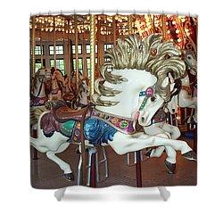 Shower Curtain featuring the photograph Fancy Flashy Pony -ri by Barbara McDevitt