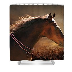 Fancy Free Shower Curtain by Michelle Twohig