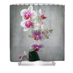 Fancy Orchids Shower Curtain by Louise Kumpf