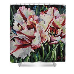 Fancy Parrot Tulips Shower Curtain by Jane Girardot