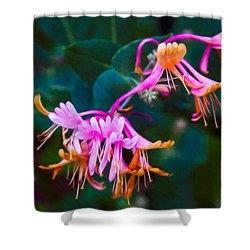 Fantasy Flowers Shower Curtain by Omaste Witkowski