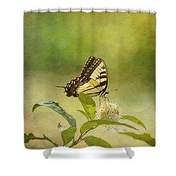 Fantasy Shower Curtain by Kim Hojnacki