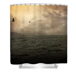 Far Apart Shower Curtain by Taylan Apukovska
