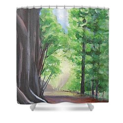 Faraway Shower Curtain by Jane  See