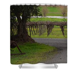 Farm And Vineyard Shower Curtain by Cheryl Miller