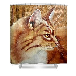 Farm Cat On Rustic Wood Shower Curtain by Debbie LaFrance