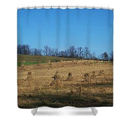 Shower Curtain featuring the photograph Farm Days by Sara  Raber