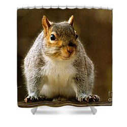 Fat 'n Sassy Smile Shower Curtain by Lois Bryan