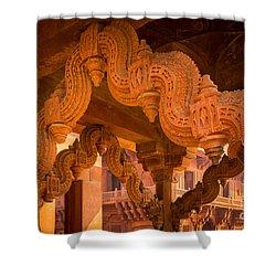 Fatehpur Sikri Detail Shower Curtain by Inge Johnsson