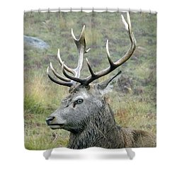 Stag Party The Series Father To Be. Shower Curtain