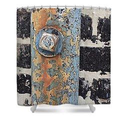 Fav Find 12/19/13 Shower Curtain