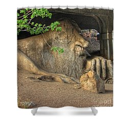 Shower Curtain featuring the photograph Fe Fi Fo Fum ... by Chris Anderson