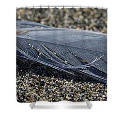 Feather And Sand Shower Curtain