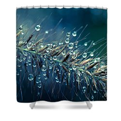 Feather Grass Dance  Shower Curtain