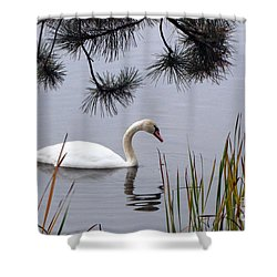Feathered Friend Along The Shoreline Shower Curtain by Cedric Hampton