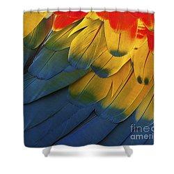 Feathery Details... Shower Curtain by Nina Stavlund