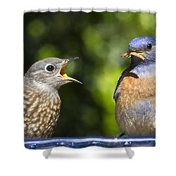 Feed Me Shower Curtain by Jean Noren