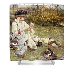 Feeding Ducks Shower Curtain by Edward Killingworth Johnson