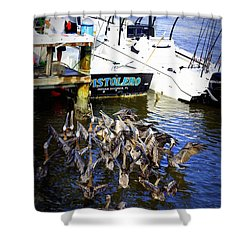 Shower Curtain featuring the photograph Feeding Frenzy by Laurie Perry