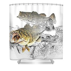Feeding Largemouth Black Bass Shower Curtain by Randall Nyhof