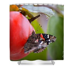 Shower Curtain featuring the photograph Feeding Time by Erika Weber
