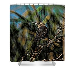 Female Grackle On The Dark Side Shower Curtain by Deborah Benoit