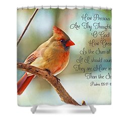 Female Northern Cardinal With Verse Shower Curtain
