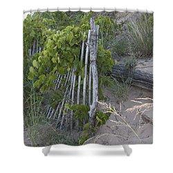 Fence N Sand Shower Curtain by Tara Lynn