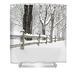 Fenced In Forest Shower Curtain by John Stephens