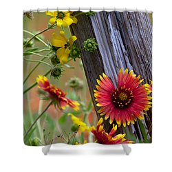 Fenceline Wildflowers Shower Curtain